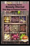Beauty Eternal - Easy Ways to Preserve Flowers