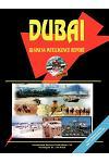 Dubai Business Intelligence Report