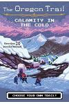 Calamity in the Cold