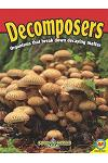 Decomposers [With Web Access]