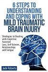 6 Steps to Understanding and Coping with Mild Traumatic Brain Injury: Strategies to Dealing with Cognitive Function Loss, Self Esteem, Relationships a