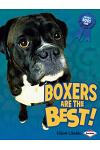 Boxers Are the Best!