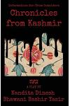 Chronicles from Kashmir: Information For/From Outsiders