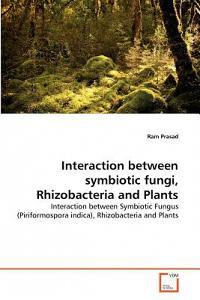 Interaction Between Symbiotic Fungi, Rhizobacteria and Plants