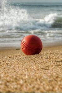 Beach Cricket Notebook