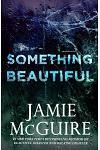 Something Beautiful: A Novella