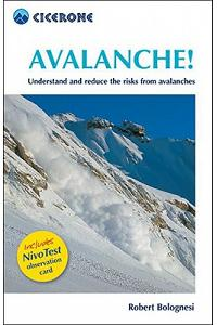 Avalanche!: Assess and Reduce Risks from Avalanches [With Nivo Test Observation Card]