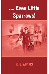 .... Even Little Sparrows!