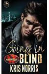 Going in Blind: Brotherhood Protectors World