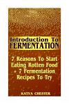 Introduction To Fermentation: 7 Reasons To Start Eating Rotten Food + 7 Fermentation Recipes To Try