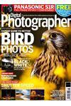 Digital Photographer - UK (N.216, 2019)