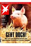 Stern - DE (6-month)