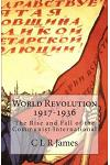 World Revolution 1917-1936: The Rise and Fall of the Communist International