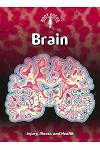 Brain: Injury, Illness, and Health