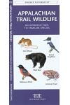 Golf Course Wildlife, Southern Arizona: A Folding Pocket Guide to Familiar Species