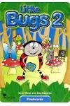 Little Bugs Flashcards Level 2
