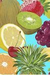 A Plethera of Fruit Notebook