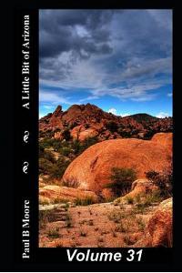 A Little Bit of Arizona: Volume 31