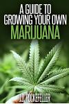 A Guide to Growing Your Own Marijuana