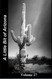 A Little Bit of Arizona: Volume 27