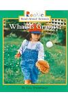 What Is Gravity? (Rookie Read-About Science: Physical Science: Previous Editions)