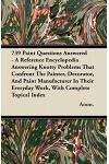 739 Paint Questions Answered - A Reference Encyclopedia Answering Knotty Problems That Confront the Painter, Decorator, and Paint Manufacturer in Thei