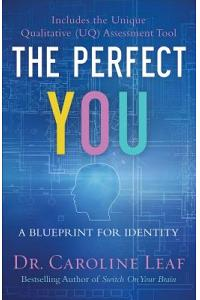 The Perfect You : A Blueprint for Identity