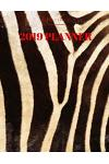 2019 Planner: Zebra Print Monthly Calendar Format with Habit Tracker, Moon Phases, Monthly National Themes, Daily Holidays (Both Qui