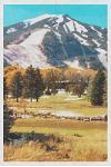 Aspen: Colorado Rocky Mountains Ski Resort 2020 Planner Calendar Daily Weekly Monthly Organizer