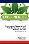 Scavenging Evaluation of PB & Cu During in Vitro Growth of Tulsi