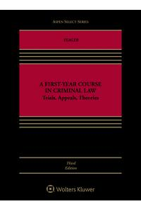 A First-Year Course in Criminal Law: Trials, Appeals, Theories