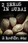 2 Seeds In Dubai!