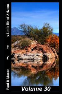 A Little Bit of Arizona: Volume 30